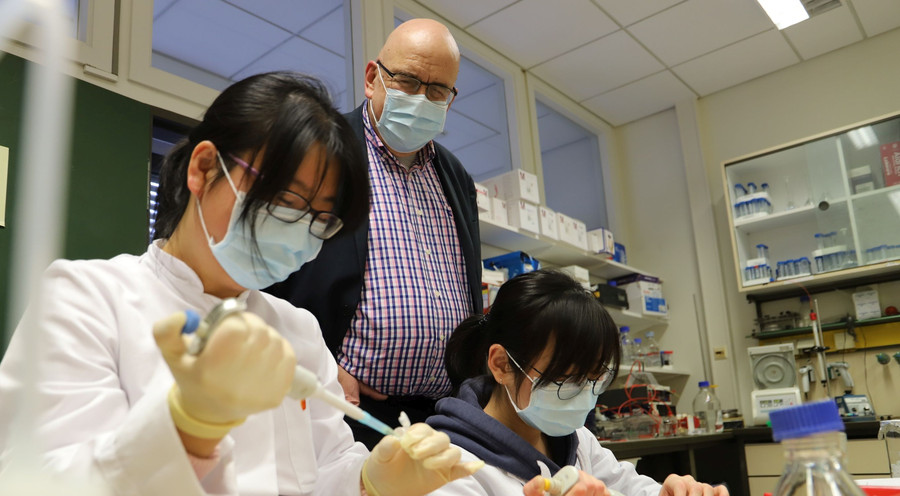Dr. Linlin Zhang, Prof. Dr. Rolf Hilgenfeld und Xinyuanyuan Sun (v.l.n.r.; Foto: Elena Vogt / Universität zu Lübeck)