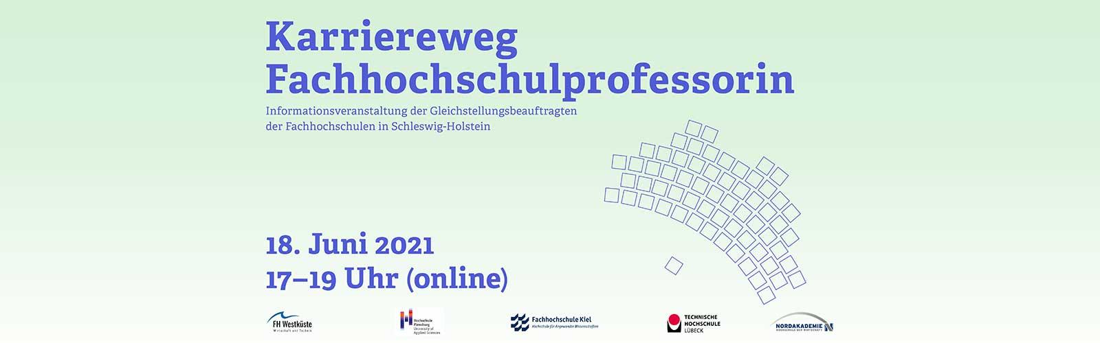 Karriereweg Fachhochschulprofessorin @ online